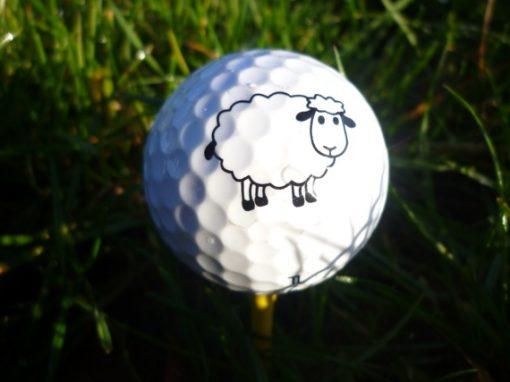 Golfbaan de Gelpenberg te Drenthe